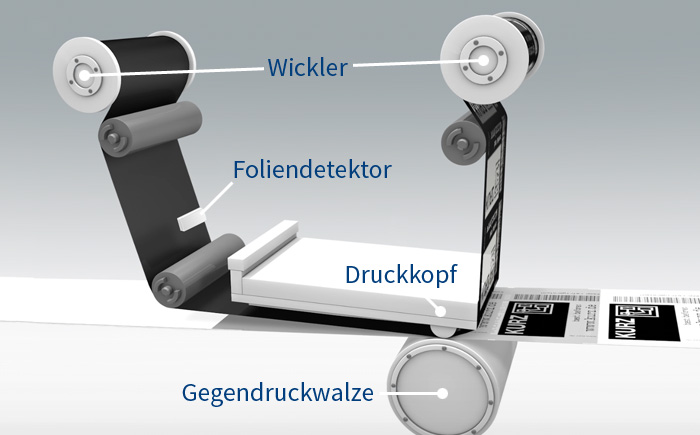 Thermotransfer-Drucker